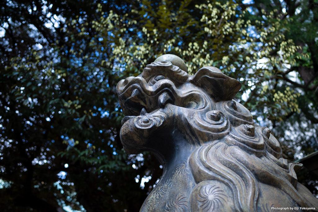 こちらも青山熊野神社にて。毎度の狛犬。4/23, RICOH GRIII