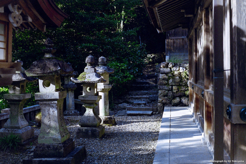 ローライ35(Rollei35)で撮影。岐阜、伊奈波神社にて。