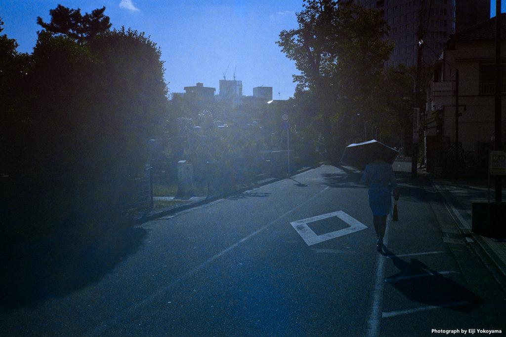 青山墓地にて。古いフィルムカメラって、稀にこんな風に写ったりするのでオモシロイ。フォクトレンダー VF135。