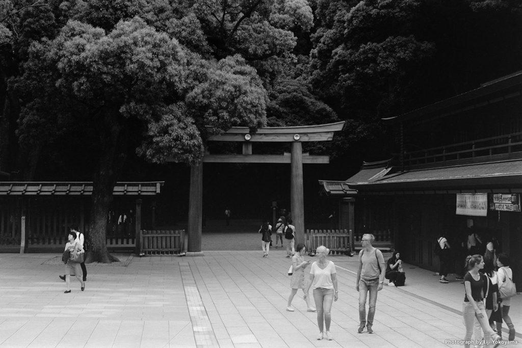 明治神宮。外国人観光客、多いです。