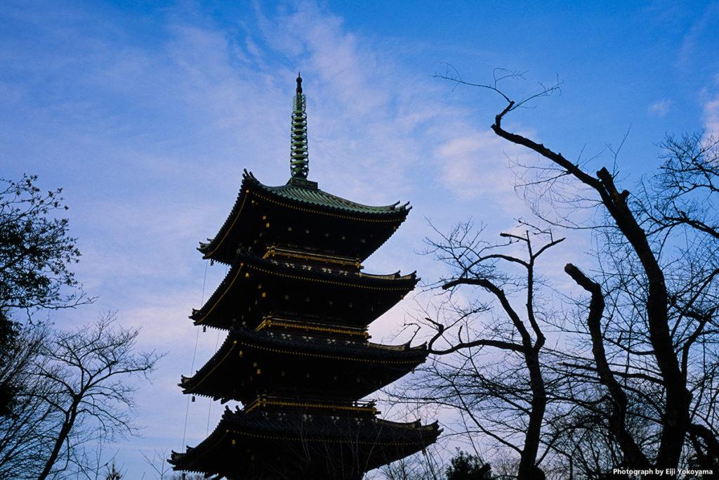旧寛永寺五重塔。なにか、京都のような雰囲気。