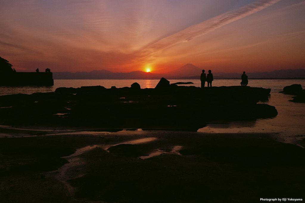 鎌倉。Leica M-A + SUMMICRON 35mm f/2 7枚玉 + エクター100