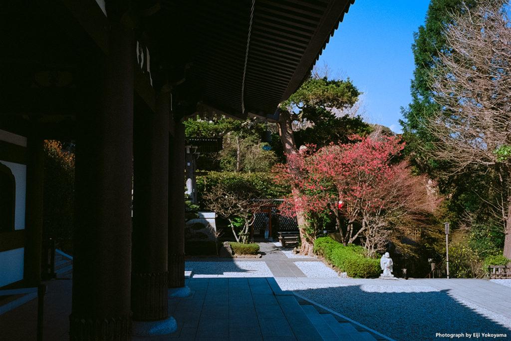 長谷寺、本堂前。