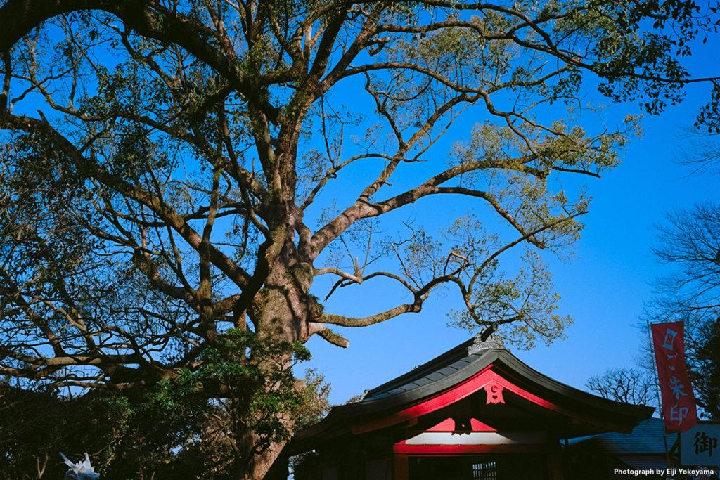 江ノ島、八坂神社。
