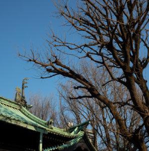 湯島聖堂と御茶ノ水界隈
