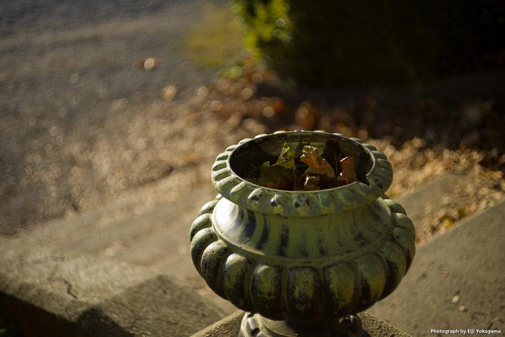 絞り開放F2。落ち葉のボケが若干うるさく感じますが、雰囲気出てると思います。新宿御苑にて。