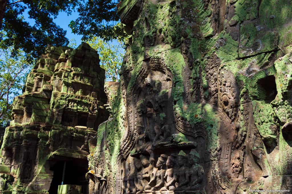 木の根に侵されていない遺跡。壁面の彫刻はしっかり残っています。