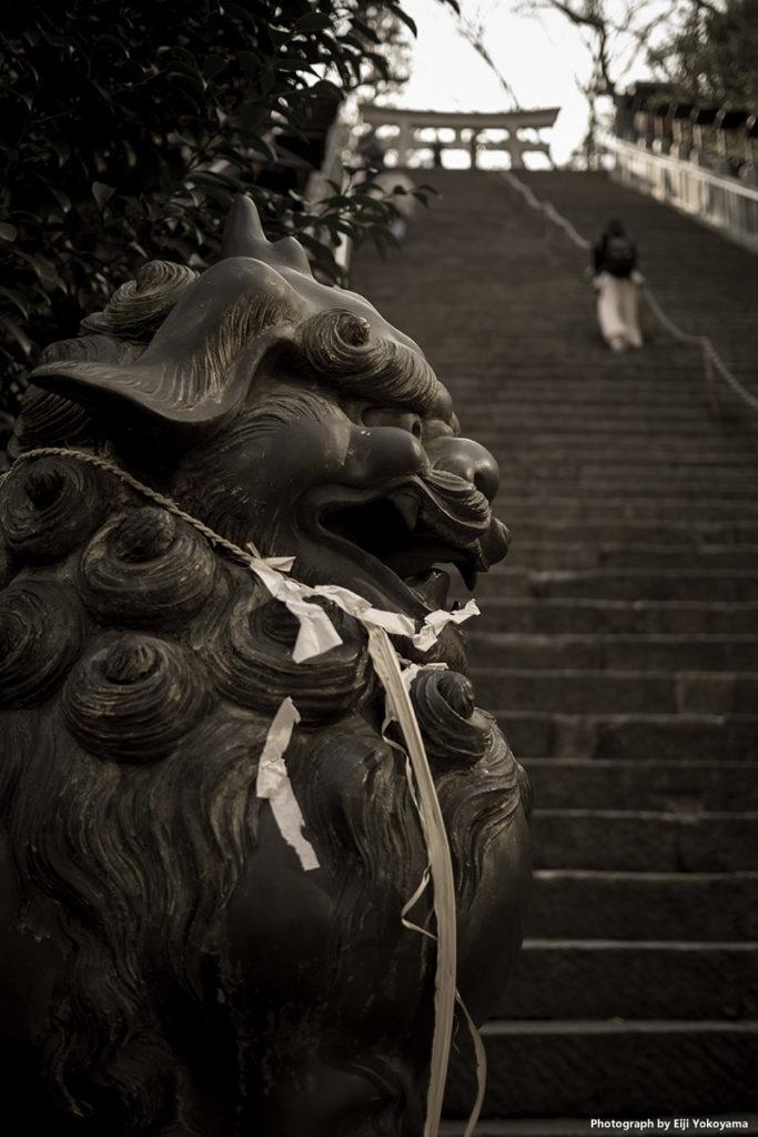 愛宕神社。狛犬と石段。