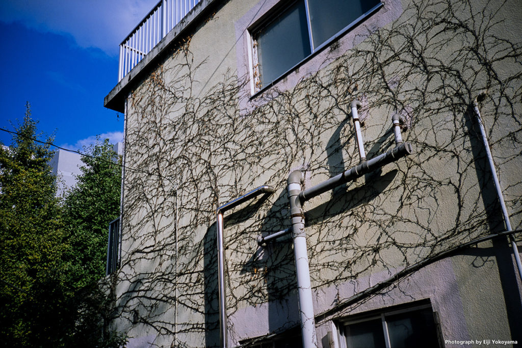 青山北町アパートにて。CONTAX T3(コンタックスT3)
