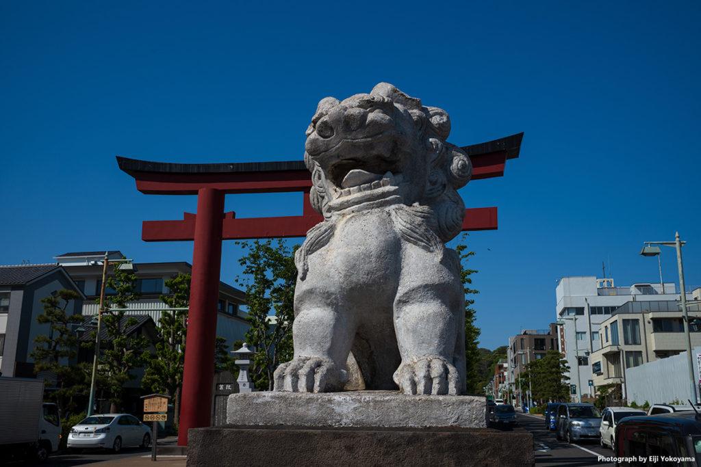 鶴岡八幡宮、若宮大路の狛犬。なかなかユニークな狛犬です。