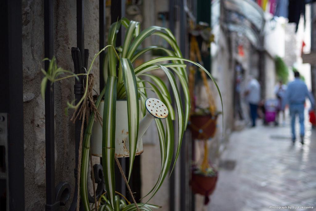 通り沿い、柵にかけられたジョウロの鉢植え。
