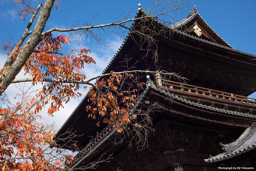 京都・紅葉。南禅寺。ライカM10 + ズミクロン35mm7枚玉。