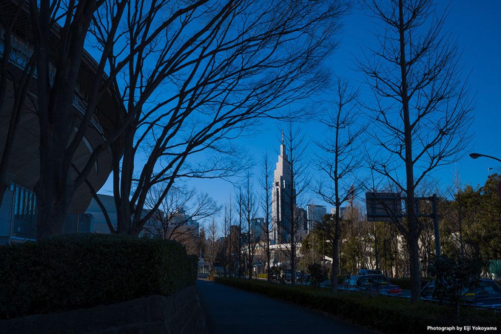 今年1/14撮影。東京体育館横から代々木方面。