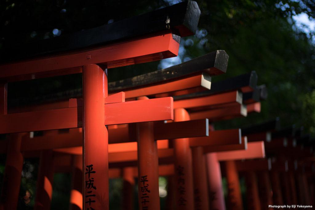 """根津神社、お稲荷さん。""""千本鳥居""""のアップです。"""
