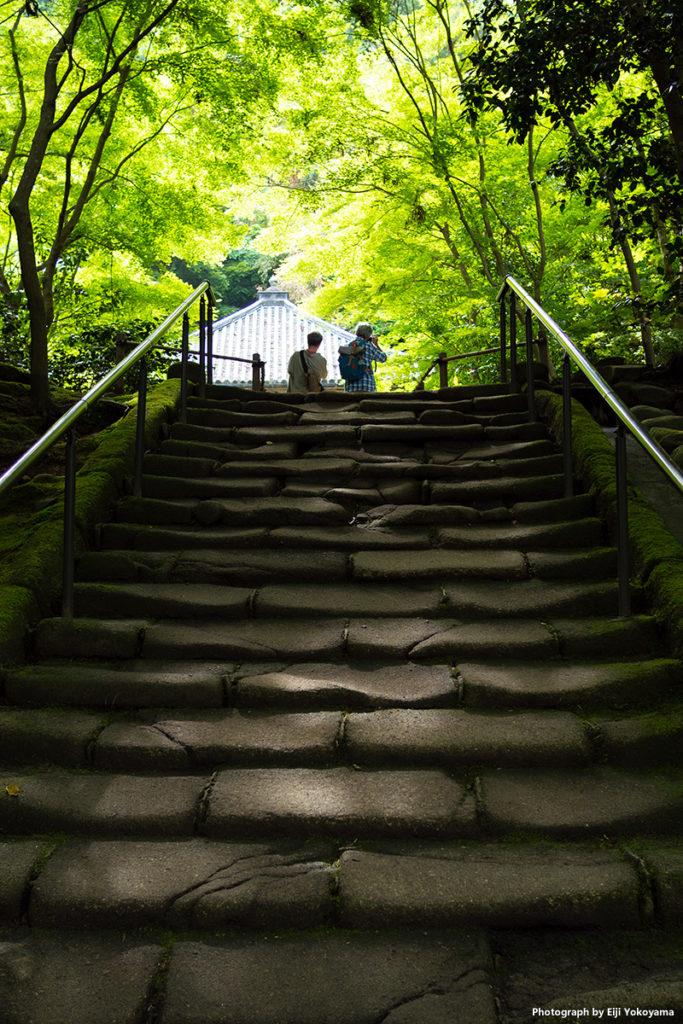 松島、円通院。瑞巌寺に隣接、広い庭園と洞窟群で有名。