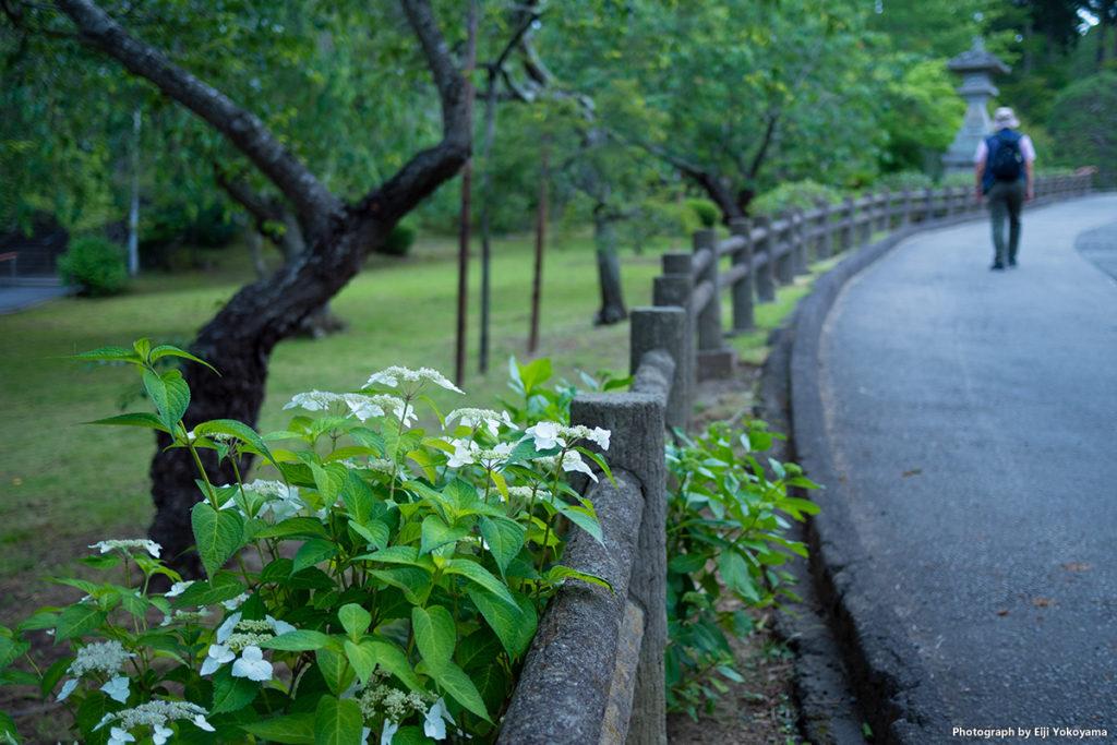 塩釜神社。石段ではなく道路で行ってもかなりの急勾配、徒歩ではツライ。