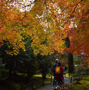 紅葉の始まった京都、Leica M10で