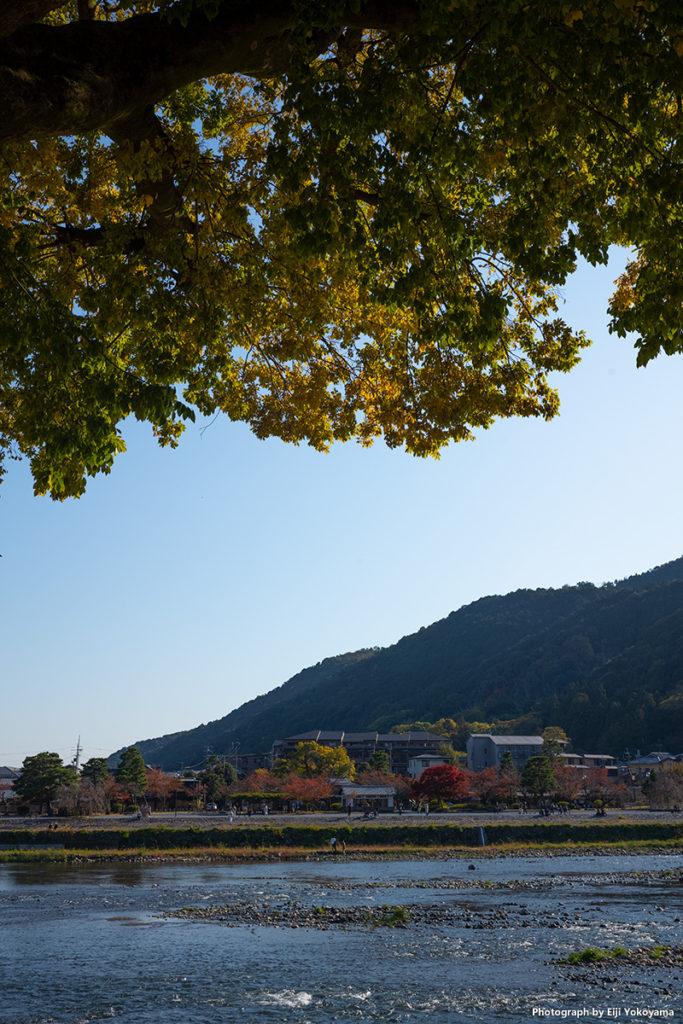 嵐山、桂川と中之島。
