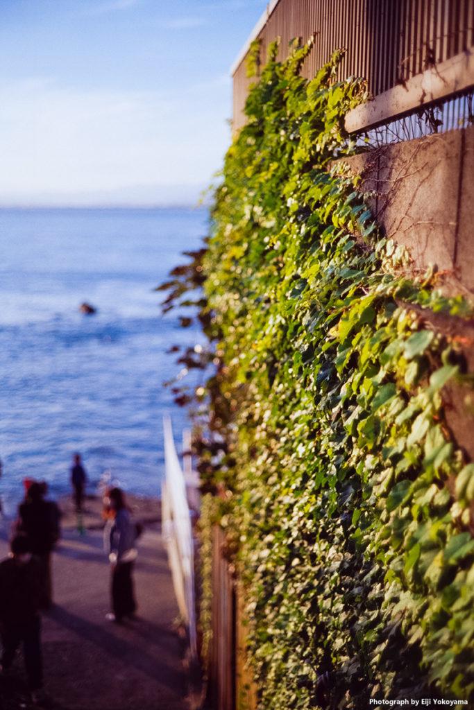 海岸、民家の壁。