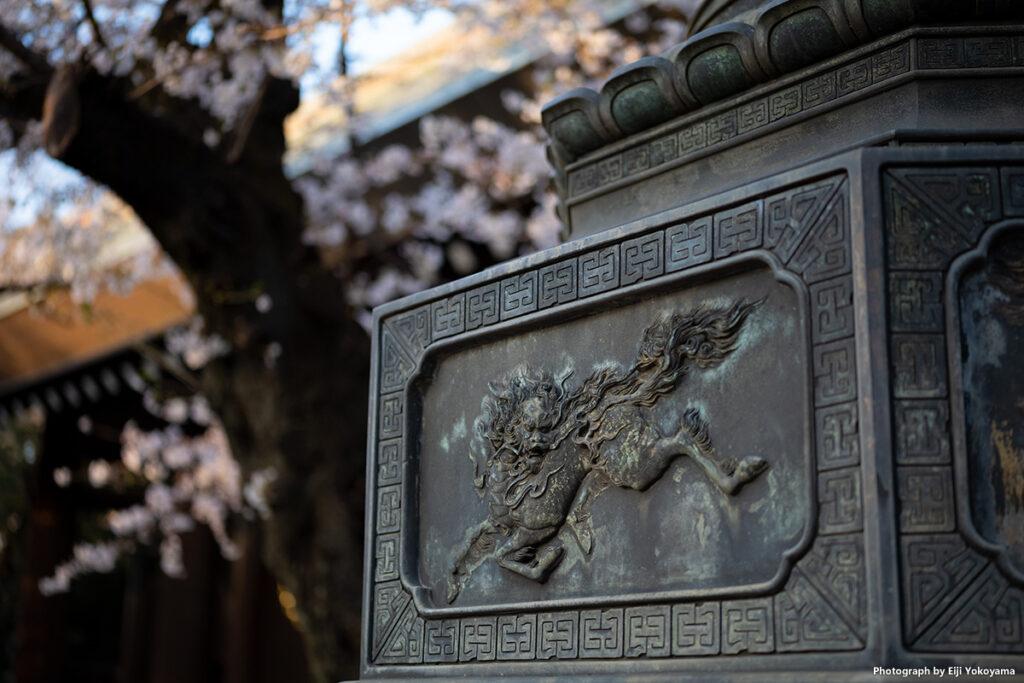 青銅燈籠の麒麟像レリーフ、神門と桜をバックに。