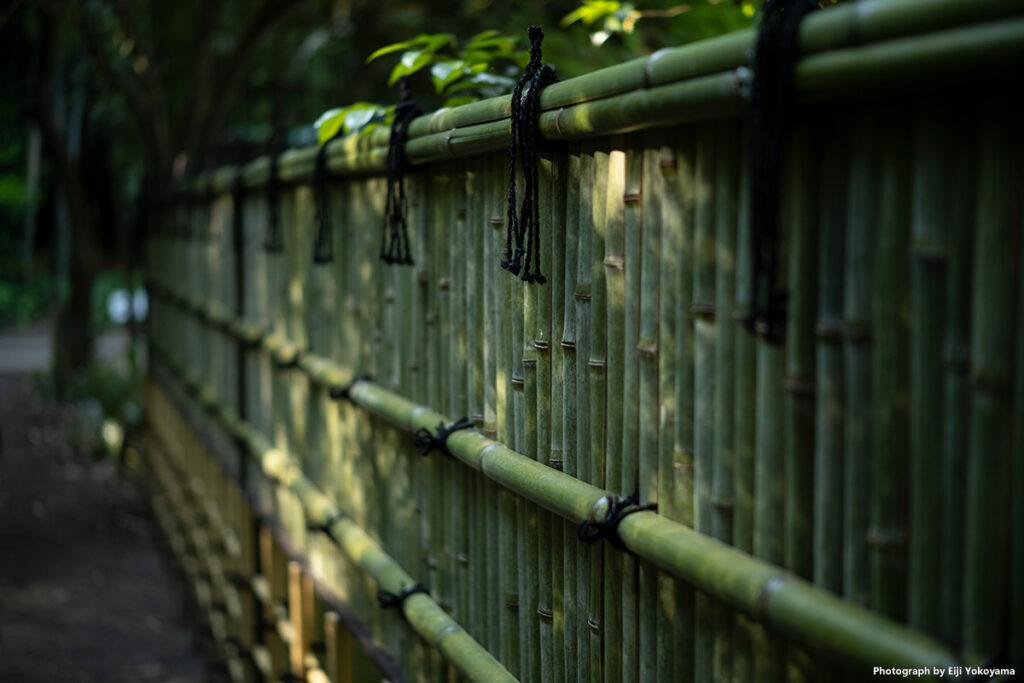 浄智寺。竹塀見るとついつい撮りたくなります。何時ぞやも柴又で同じような写真を撮っていました。