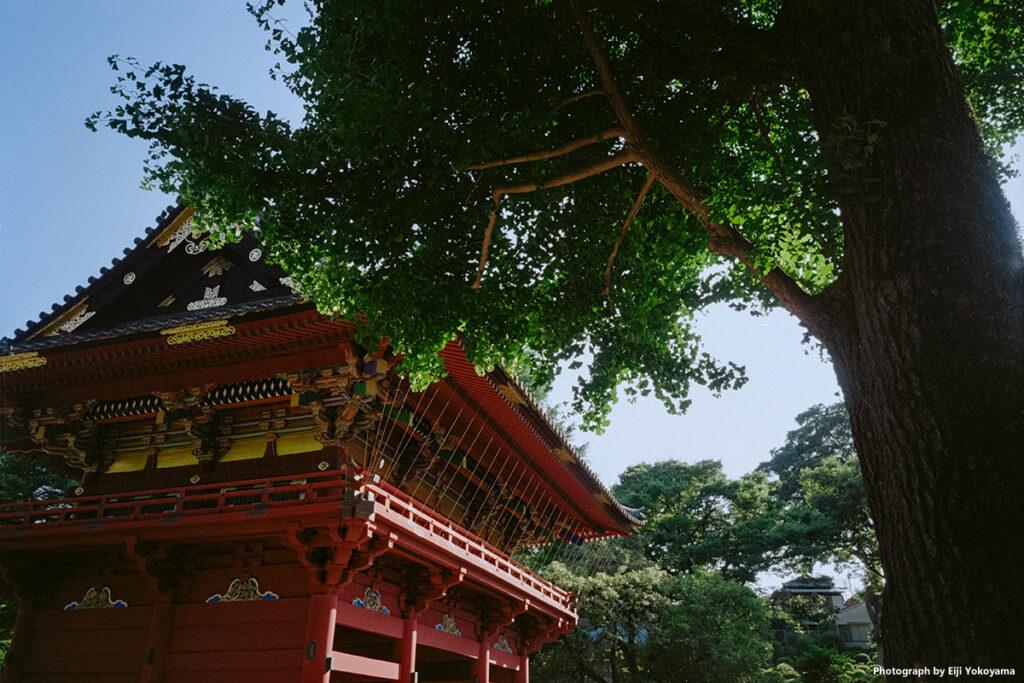 根津神社 / Kodak ProImage 100